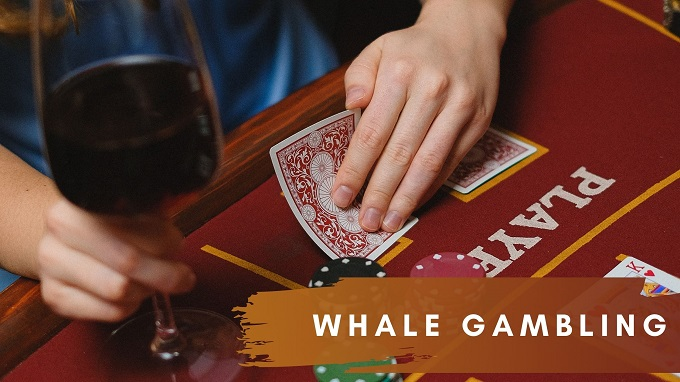 How much does casino whales gamble?